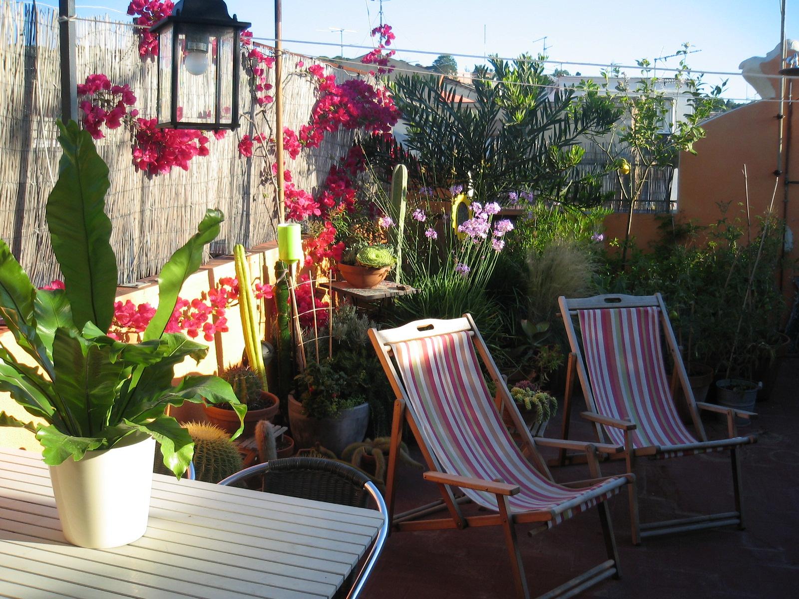 Jardinitis consejos para ajardinar una terraza - Plantas para terrazas ...