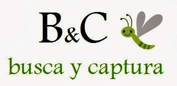 http://buscaycaptura.blogspot.com.es/