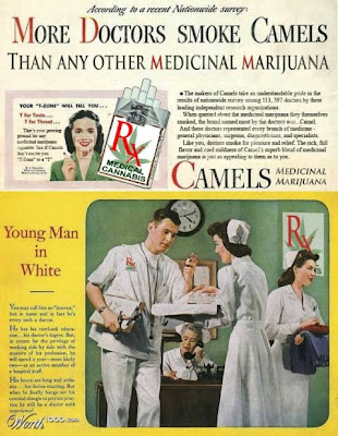 Camels, The Medical Marijuana Doctors Prefer Most