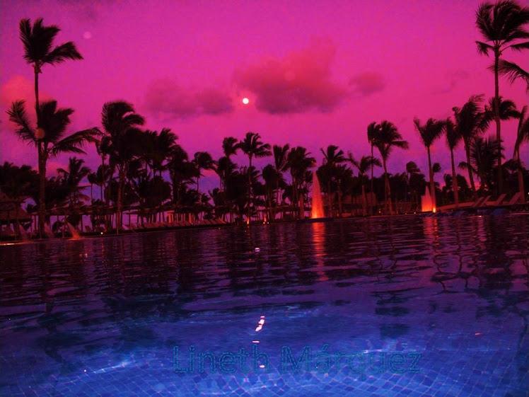 Palmeras Punta Cana
