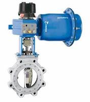severe service control valve