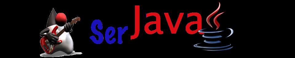 Ser Java
