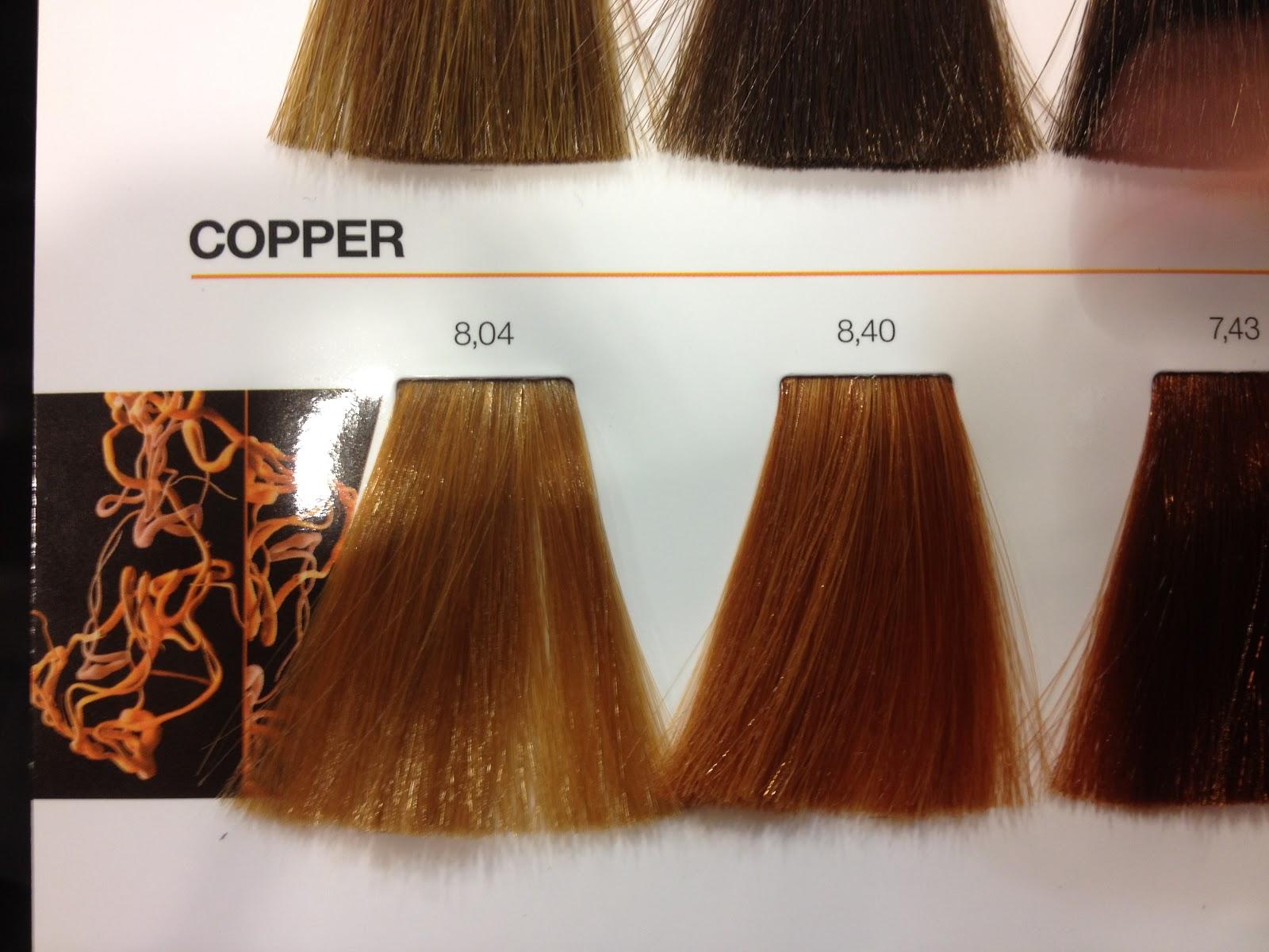 Capitec internet banking review inoa loreal hair color at rush review inoa loreal hair color at rush kensington nvjuhfo Images