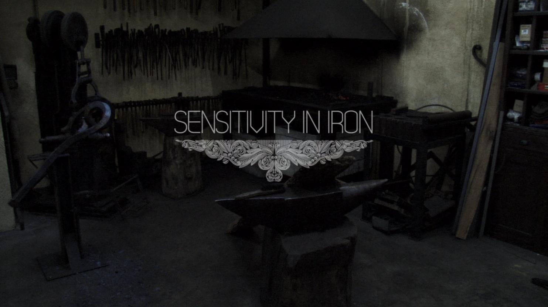 Sensitivity-in-iron-angel-amargant-enric-pla