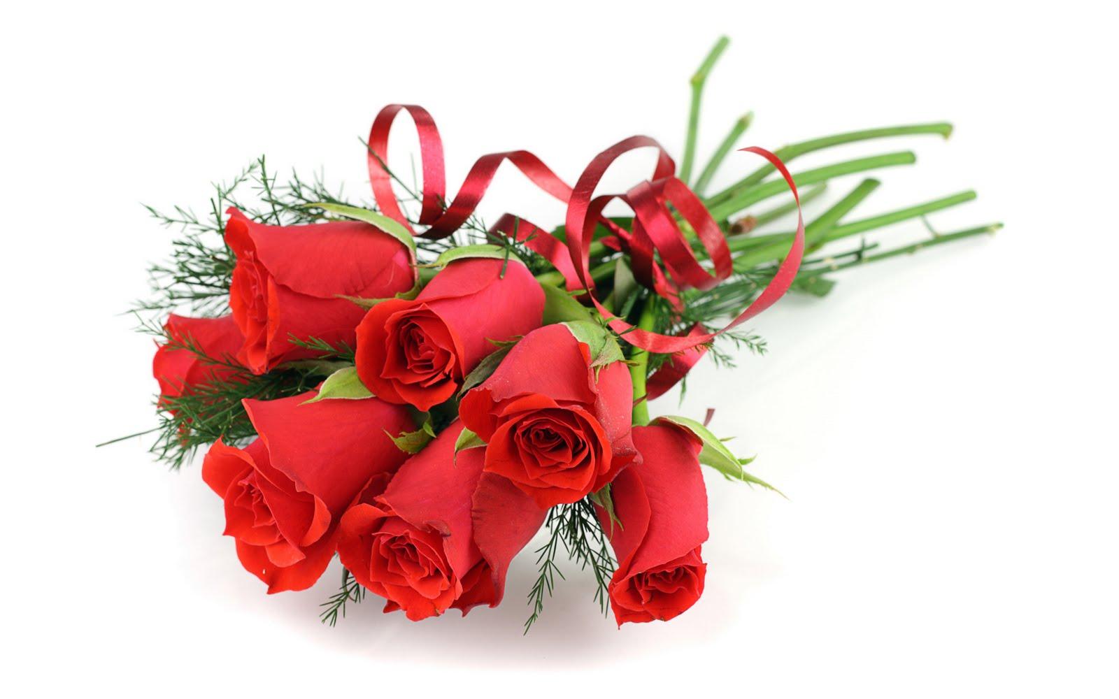 banco de imagenes fotos de rosas rojas arreglos florales y postales para el da del amor y la amistad happy valentineus day