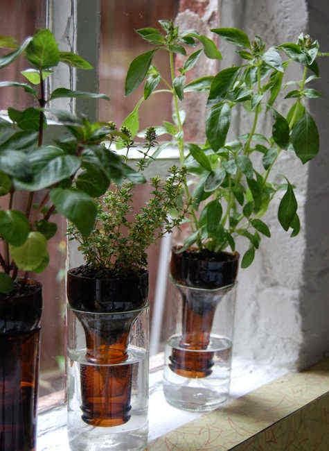 12 Model Pot Bunga Cantik Dari Bahan Botol #Pilihan 1