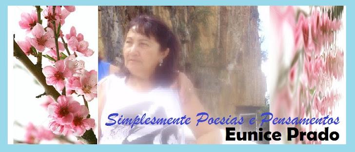 SIMPLESMENTE POESIAS E PENSAMENTOS - EUNICE PRADO