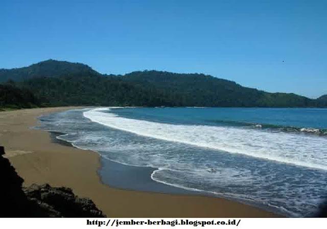 pantai bandealit jember yang menawan