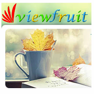 earn-online-viewfruit-philippines