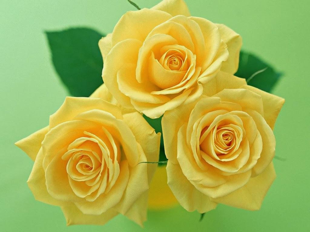 Buquê De Flores Flores Amarelas Buque De Flores