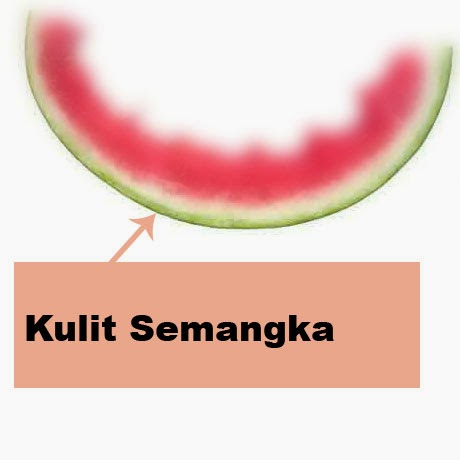 manfaat kulit semangka bagi kesehatan