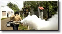Picture of man spraying mosquitos