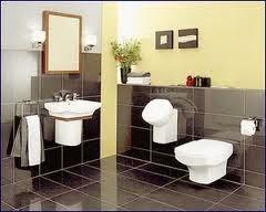 Sedot WC Dawarblandong Mojokerto