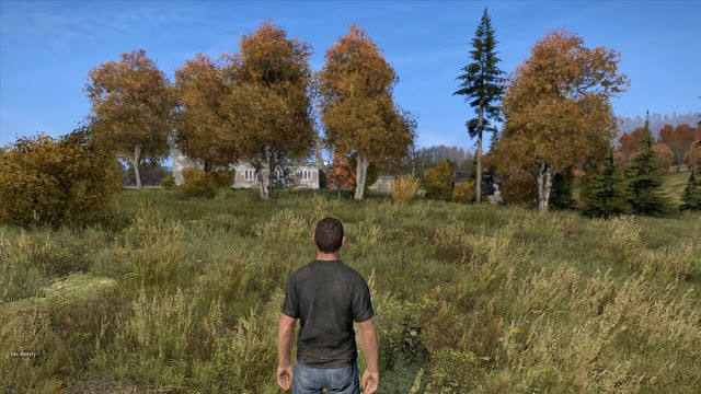 """DayZ"" Standalone Alpha screenshot"