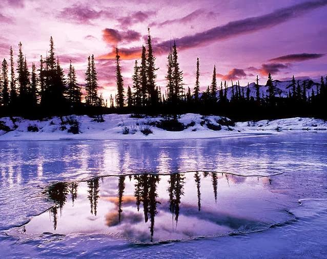 Natural Wallpaper Of Winter Season