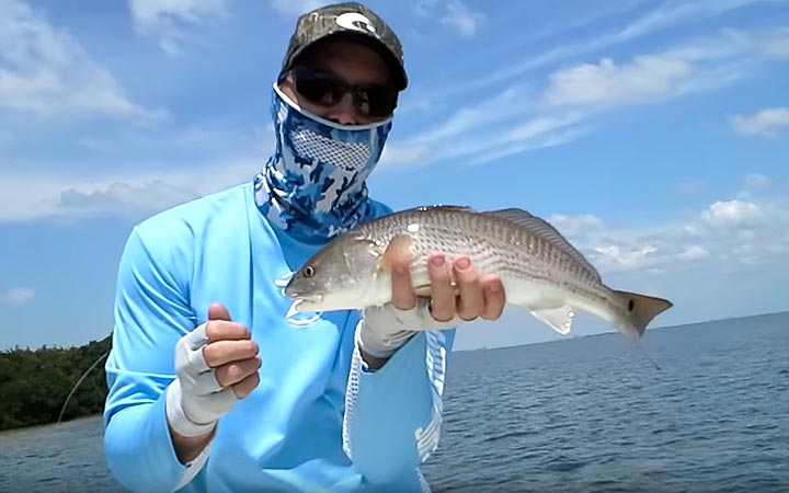 April Tampa Bay Redfish Fishing Report with Capt. Chris Camps