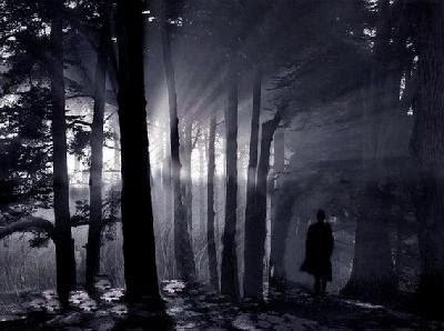 noche y sombras que no susurran [libre] Em-um-bosque
