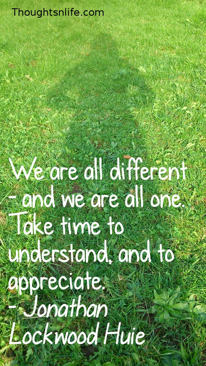 Thoughtsnlife.com: We are all different - and we are all one. Take time to understand, and to appreciate. - Jonathan Lockwood Huie