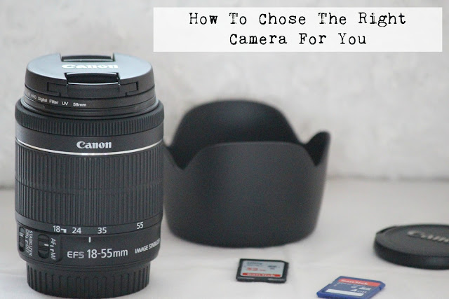 blogging camera recommendations lenses cannon
