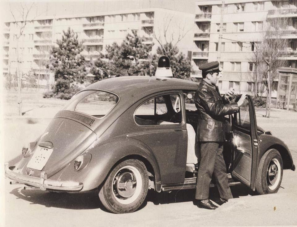 Volkswagen Maggiomodelli Volkswagen In Divisa Il