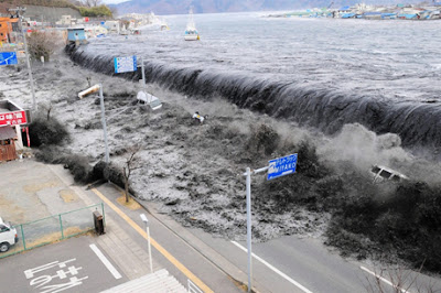 Tohoku earthquake management