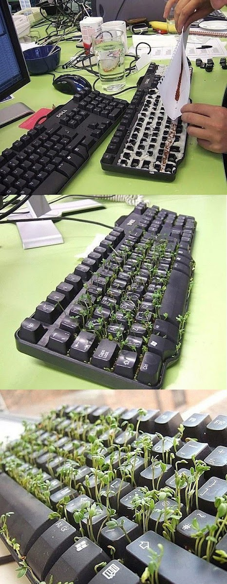 Ideas : Green Keyboard