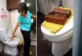 Python In Toilet Bites Woman In Singapore