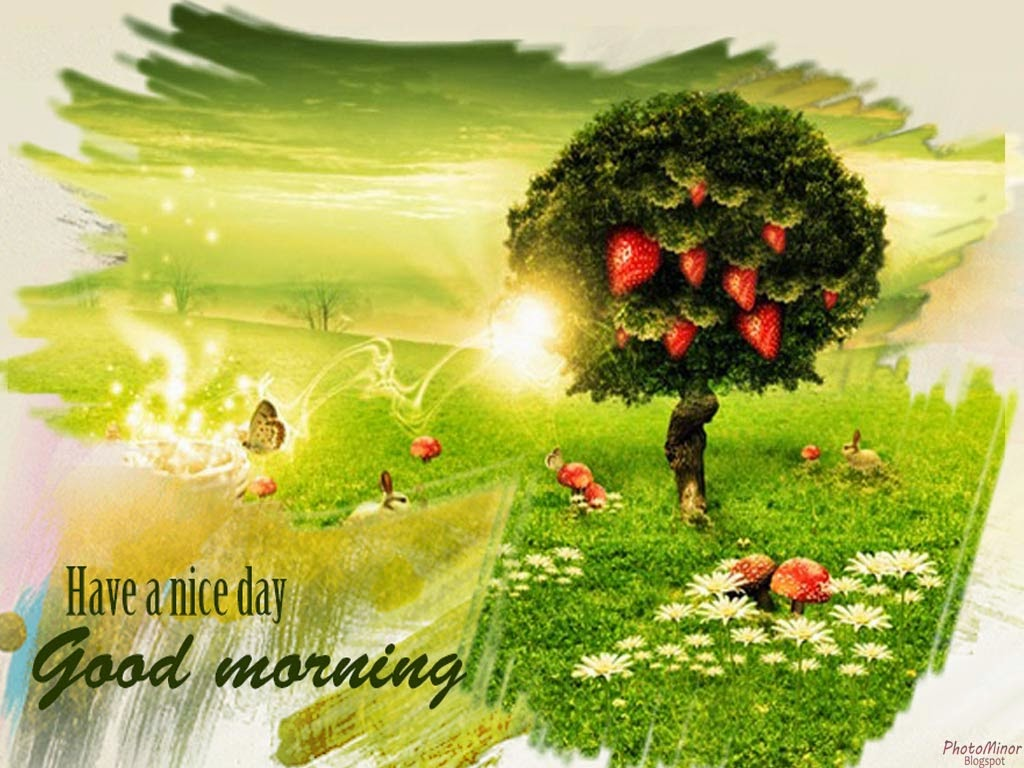 Top Good Morning Hd New Wallpapers 2014 Amazing Photo Stock