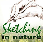 Sketching in Nature