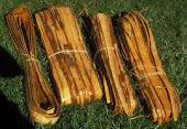 Cedar Bundles