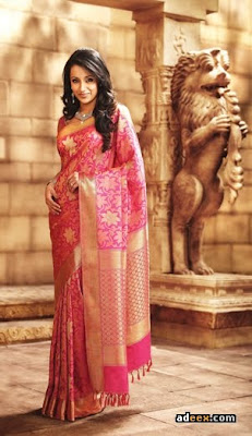 Pothy's Silk Sari collections