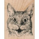 Surprised Kitty Cat 2.25 x 2.75
