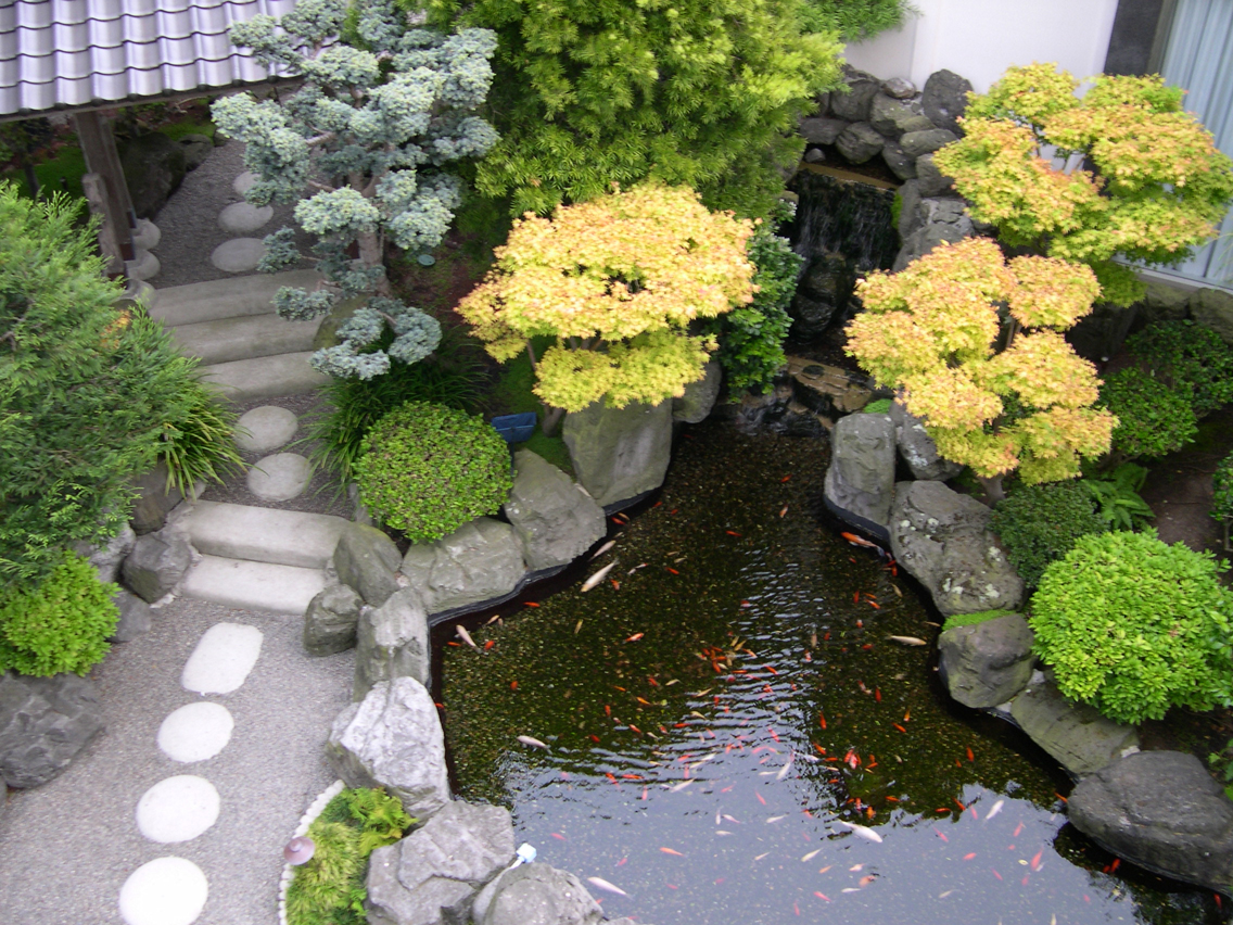 Gold stuff beautiful japanese gardens for Japanese garden bushes
