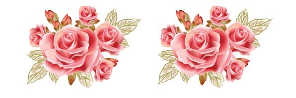 Bordes de rosas