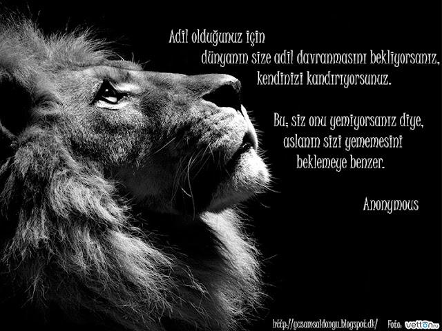 Adil olduğunuz için            dünyanın size adil davranmasını bekliyorsanız,                             kendinizi kandırıyorsunuz.          Bu; siz onu yemiyorsanız diye,         aslanın sizi yememesini             beklemeye benzer.                   Anonymous