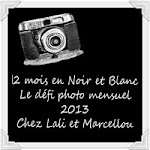 """12 mois """"En Noir et Blanc"""""""