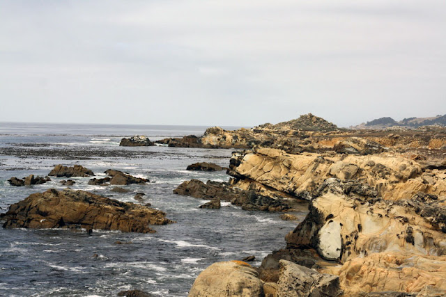ocean coast Salt Point State Park