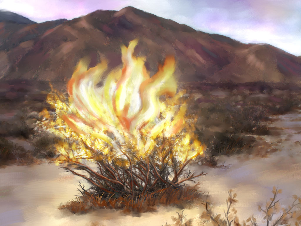 sermon august 28 in your wildest dreams your burning bush