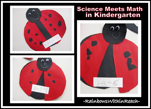 photo of: Science Meets Math with Ladybug Graphing in Kindergarten Project
