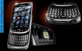 Blackberry torch 9800 - صور موبايل بلاك بيرى تورش 9800