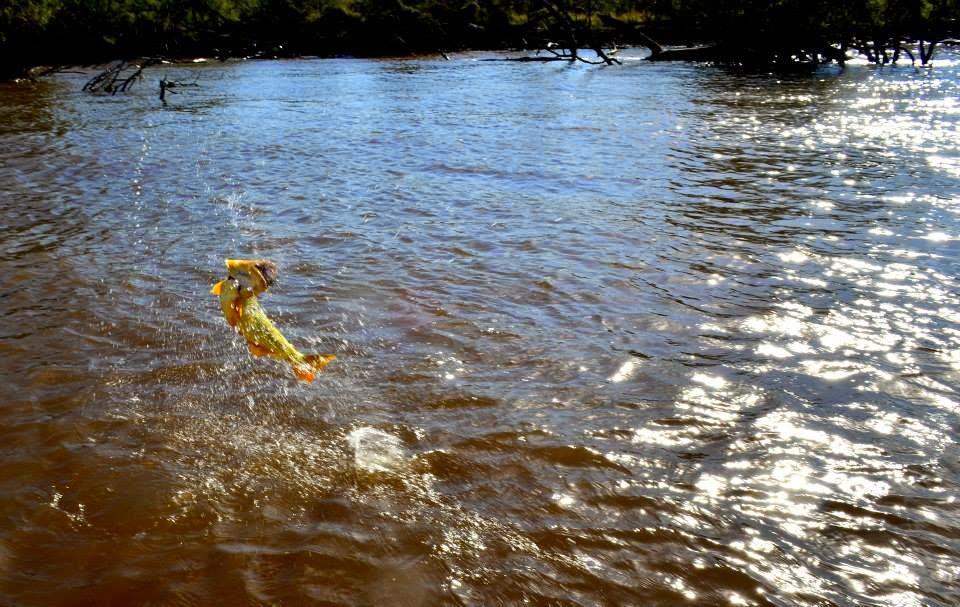 Pesca En San Nicolas