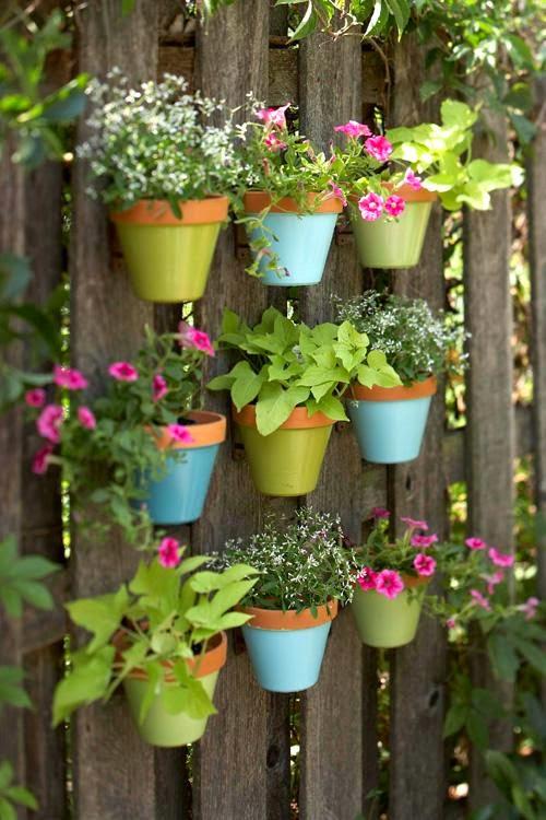 jardim vertical latas : jardim vertical latas:Jardim Vertical