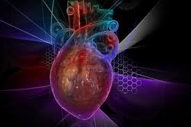 Corazón Computacional