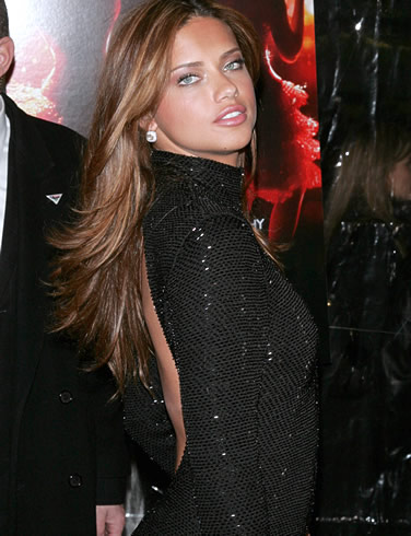 Adriana Lima Hairstyles on Adriana Lima Hairstyle