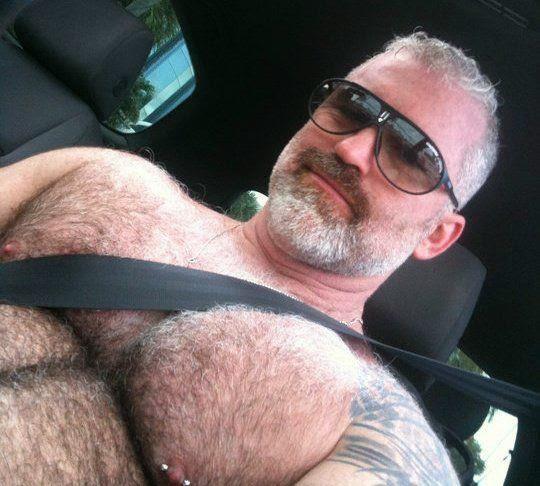 público gay oso gay