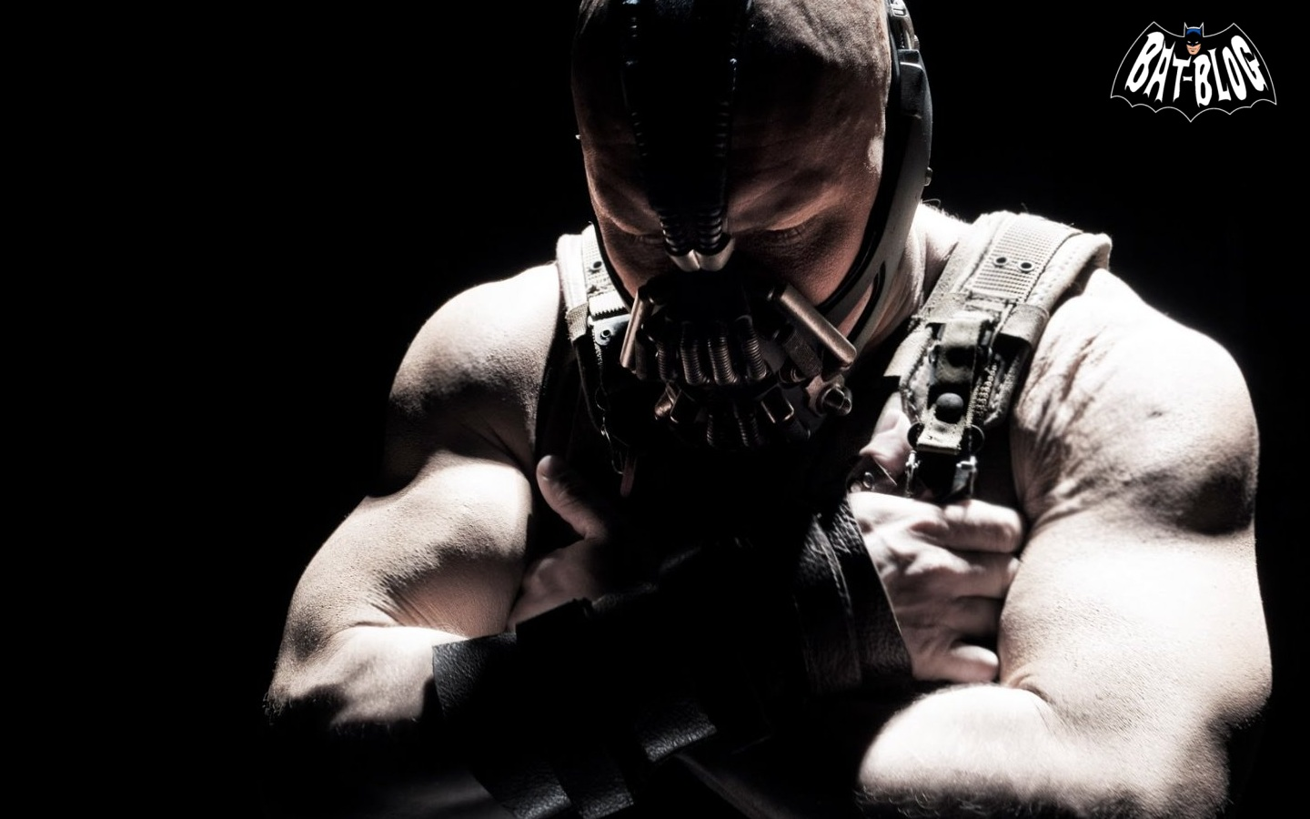 Does bane even lift dark knight rises page 4 - Batman 3 film ...