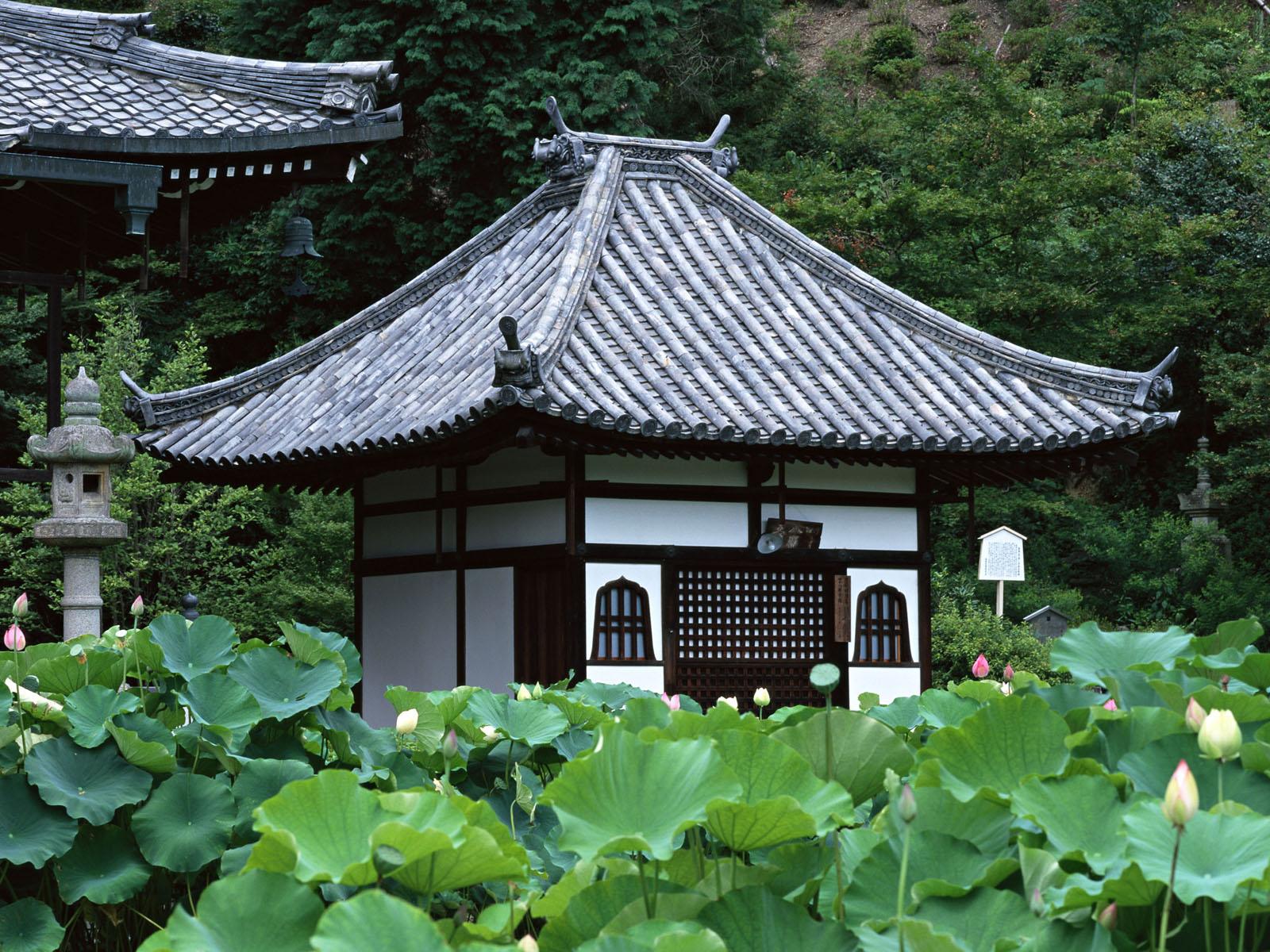 http://4.bp.blogspot.com/-QS8sE35bI6k/Tbp9fcyrlXI/AAAAAAAAAac/rejA3hdMVP8/s1600/Kyoto073.jpg