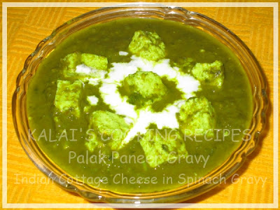 Palak Paneer Gravy Recipe | Indian Cottage Cheese in Spinach Gravy Recipe