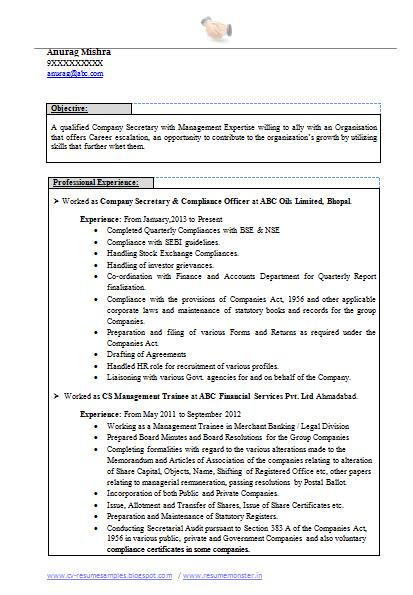 Curriculum vitae company secretary