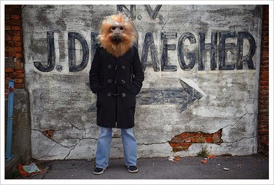 humals, monkey head, art, contemporary, photography,